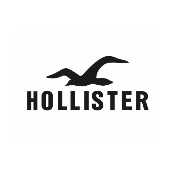 hollister-logo Job Application Fill In Form on blank generic, part time, free generic,