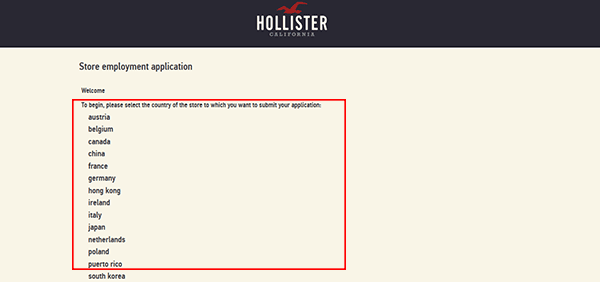 hollister-web-2