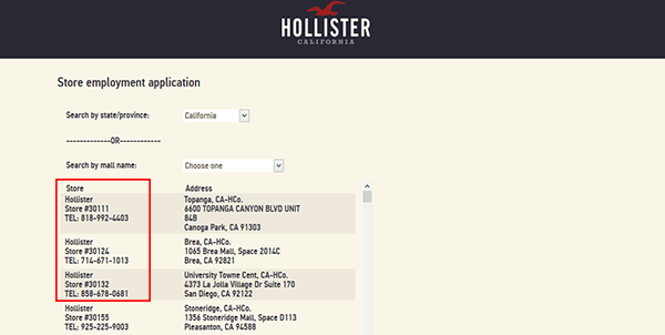 hollister-web-4