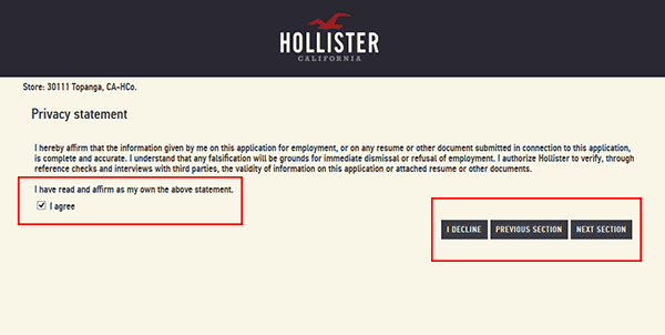 hollister-web-5